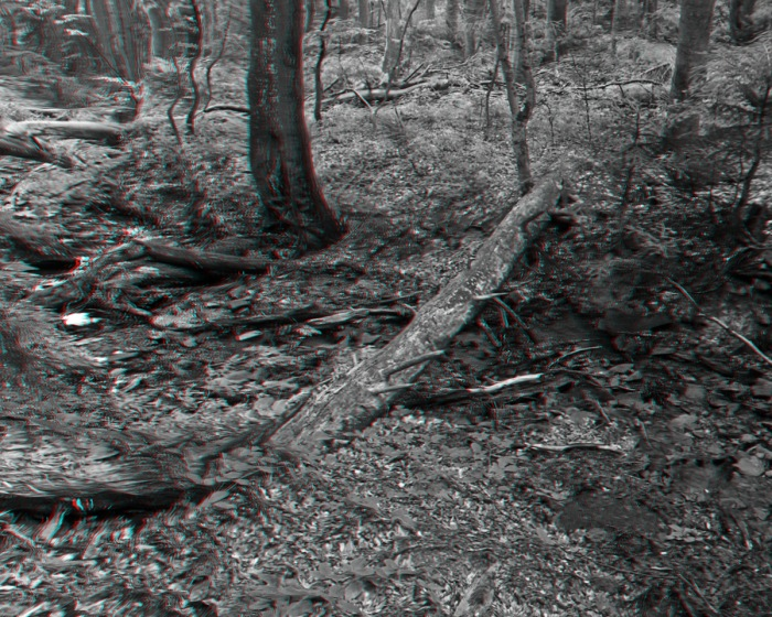 fake stereo3d test