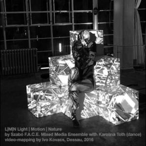 F.A.C.E Ensemble @ Bauhaus Fest 2016